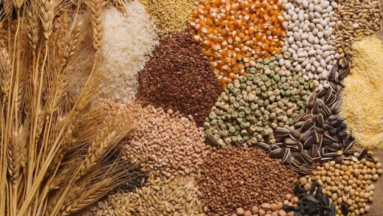 Grain Parts